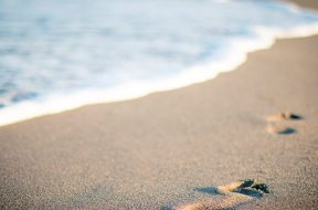 2017-07-27 17_37_50-Free stock photo of beach, salt water, sand