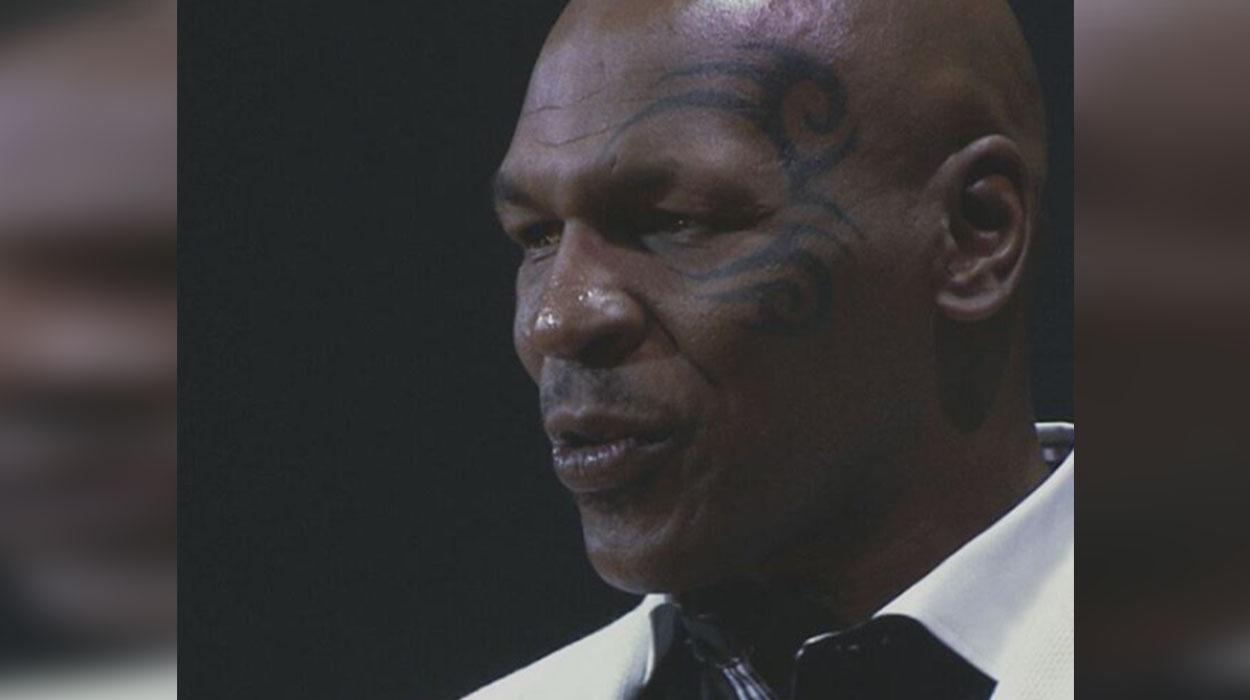 Mike Tyson fermer, kultivon marihuanën