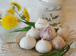 flora-flowers-freshness-garlic-416450