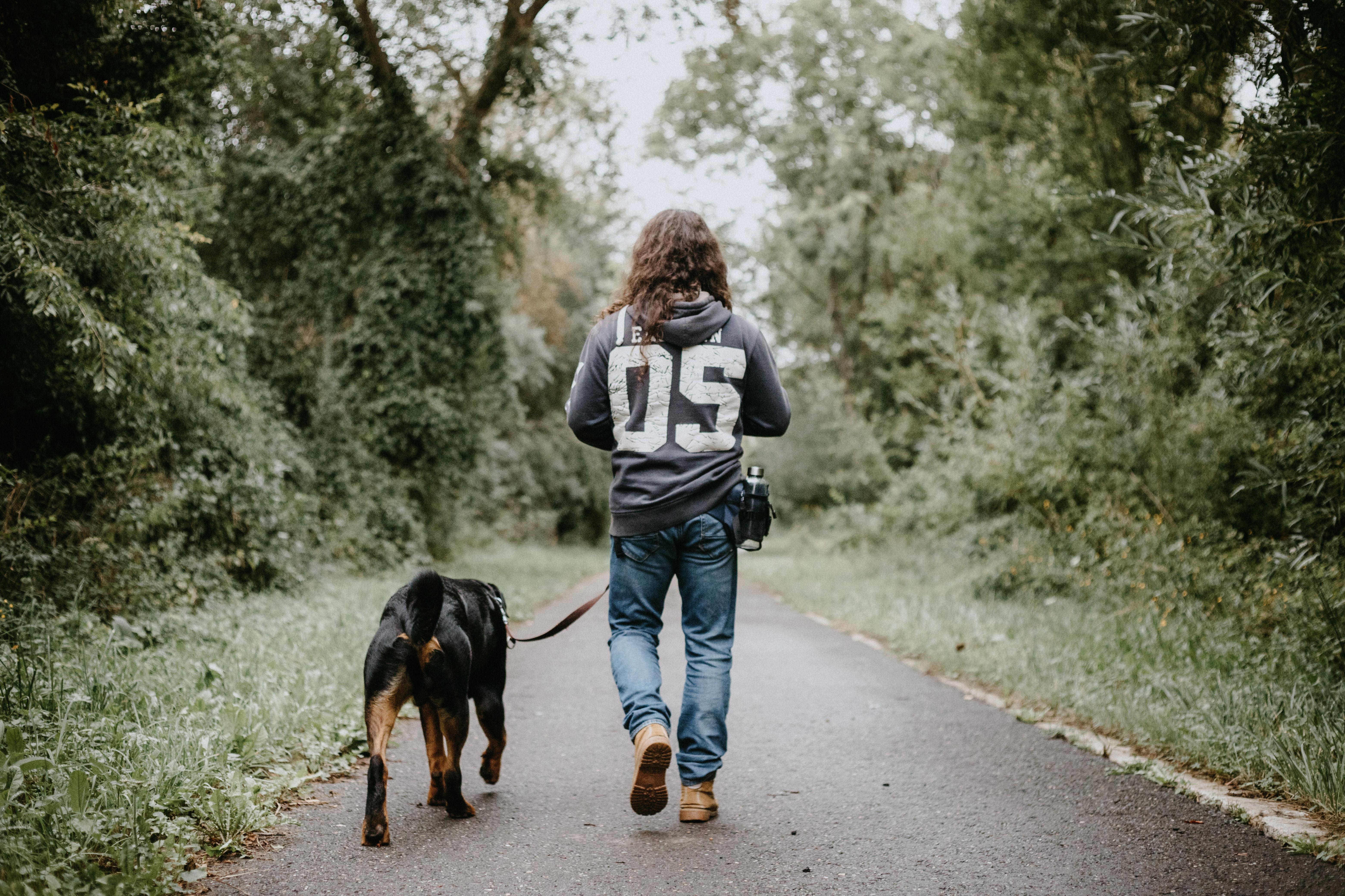 Për një shëndet më të mirë mbani një qen, ja nga çfarë ju mbrojnë ata